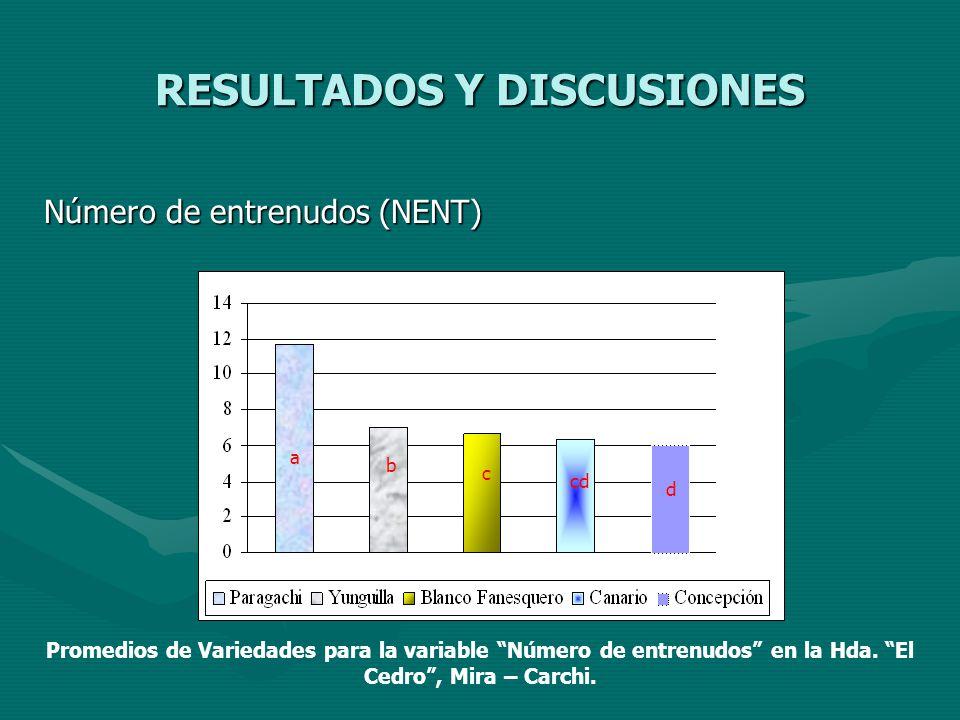 RESULTADOS Y DISCUSIONES Número de entrenudos (NENT) a b c cd d Promedios de Variedades para la variable Número de entrenudos en la Hda. El Cedro, Mir