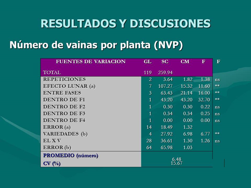RESULTADOS Y DISCUSIONES Número de vainas por planta (NVP) FUENTES DE VARIACION GLSCCMFF TOTAL119259.94 REPETICIONES23.641.821.38ns EFECTO LUNAR (a) 7