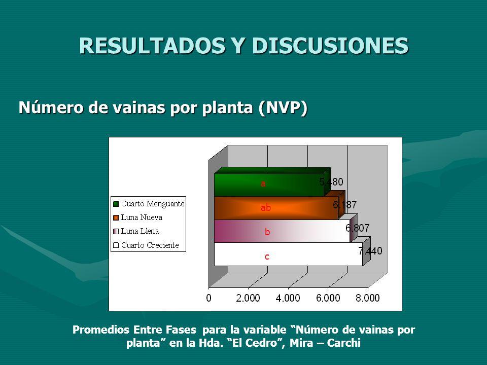 RESULTADOS Y DISCUSIONES Número de vainas por planta (NVP) a abab b c Promedios Entre Fases para la variable Número de vainas por planta en la Hda. El
