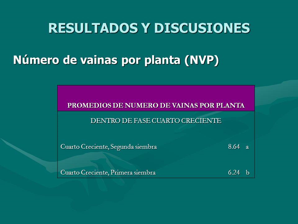 RESULTADOS Y DISCUSIONES Número de vainas por planta (NVP) PROMEDIOS DE NUMERO DE VAINAS POR PLANTA DENTRO DE FASE CUARTO CRECIENTE Cuarto Creciente,