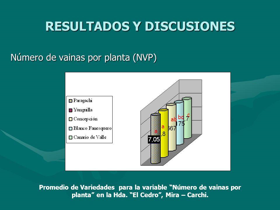 RESULTADOS Y DISCUSIONES Número de vainas por planta (NVP) a a abab bc c Promedio de Variedades para la variable Número de vainas por planta en la Hda