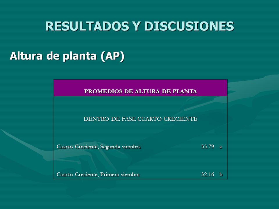 RESULTADOS Y DISCUSIONES Altura de planta (AP) PROMEDIOS DE ALTURA DE PLANTA DENTRO DE FASE CUARTO CRECIENTE Cuarto Creciente, Segunda siembra 53.79a