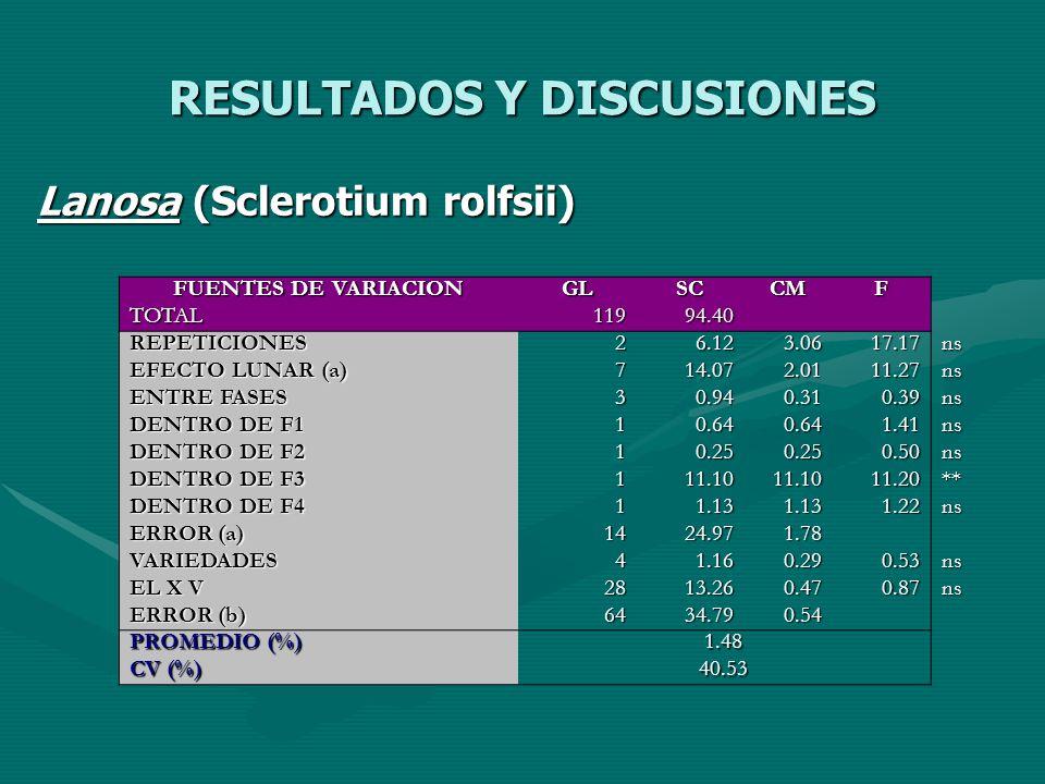 RESULTADOS Y DISCUSIONES Lanosa (Sclerotium rolfsii) FUENTES DE VARIACION GLSCCMF TOTAL11994.40 REPETICIONES26.123.0617.17ns EFECTO LUNAR (a) 714.072.