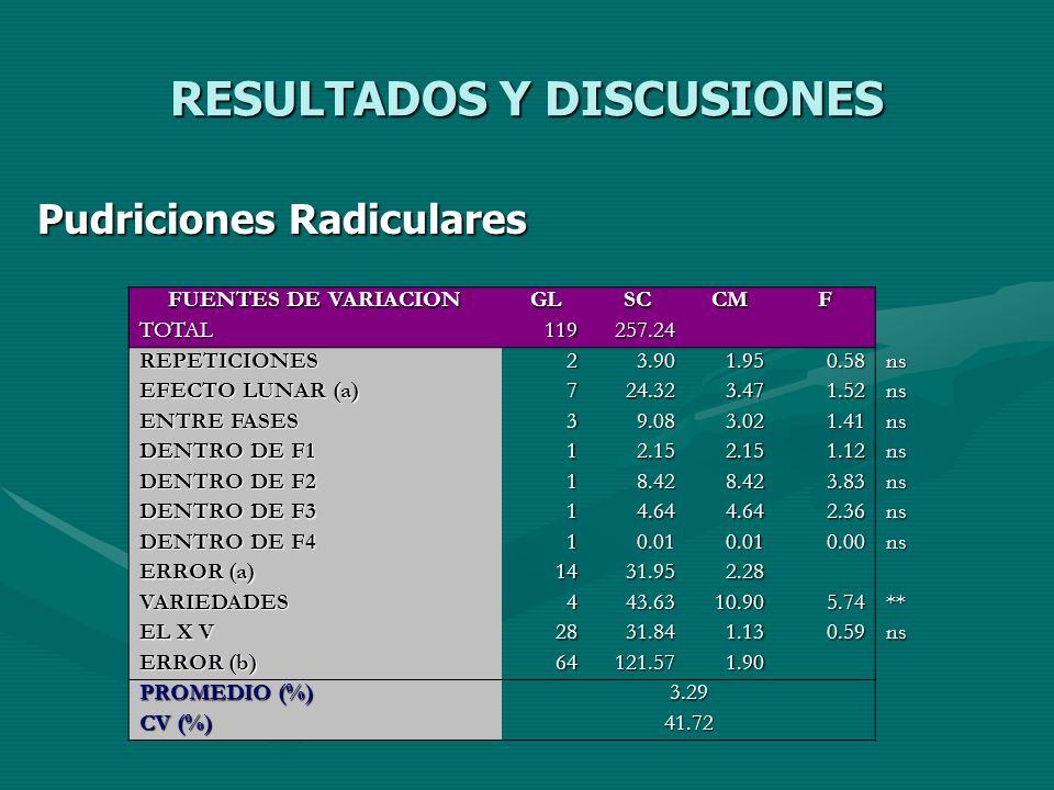 RESULTADOS Y DISCUSIONES Pudriciones Radiculares FUENTES DE VARIACION GLSCCMF TOTAL119257.24 REPETICIONES23.901.950.58ns EFECTO LUNAR (a) 724.323.471.