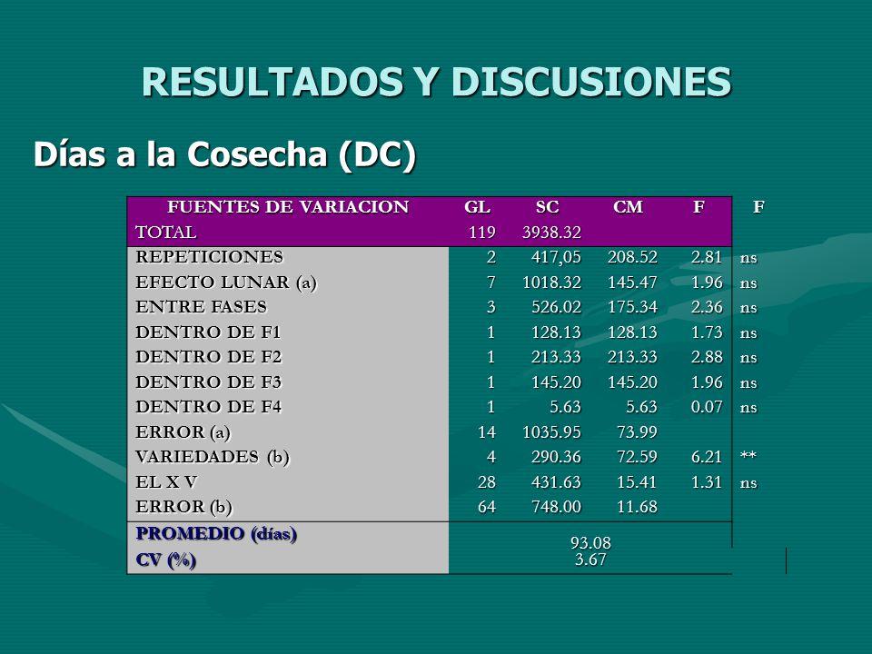 RESULTADOS Y DISCUSIONES Días a la Cosecha (DC) FUENTES DE VARIACION GLSCCMFF TOTAL1193938.32 REPETICIONES2417,05208.522.81ns EFECTO LUNAR (a) 71018.3