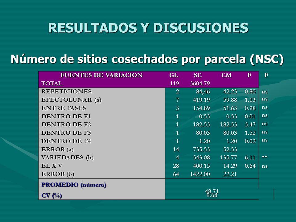 RESULTADOS Y DISCUSIONES Número de sitios cosechados por parcela (NSC) FUENTES DE VARIACION GLSCCMFF TOTAL1193604.79 REPETICIONES284,4642.230.80ns EFE