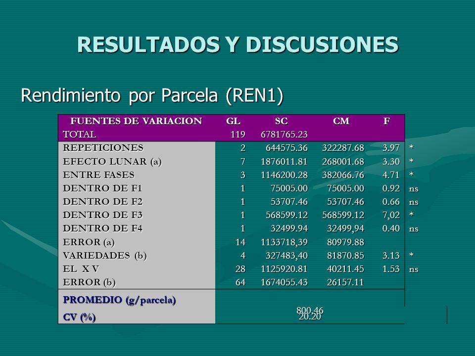 RESULTADOS Y DISCUSIONES Rendimiento por Parcela (REN1) FUENTES DE VARIACION GLSCCMF TOTAL1196781765.23 REPETICIONES2644575.36322287.683.97* EFECTO LU
