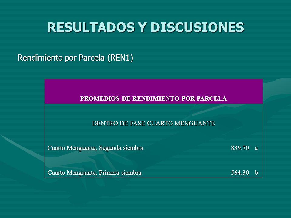 RESULTADOS Y DISCUSIONES Rendimiento por Parcela (REN1) PROMEDIOS DE RENDIMIENTO POR PARCELA DENTRO DE FASE CUARTO MENGUANTE Cuarto Menguante, Segunda