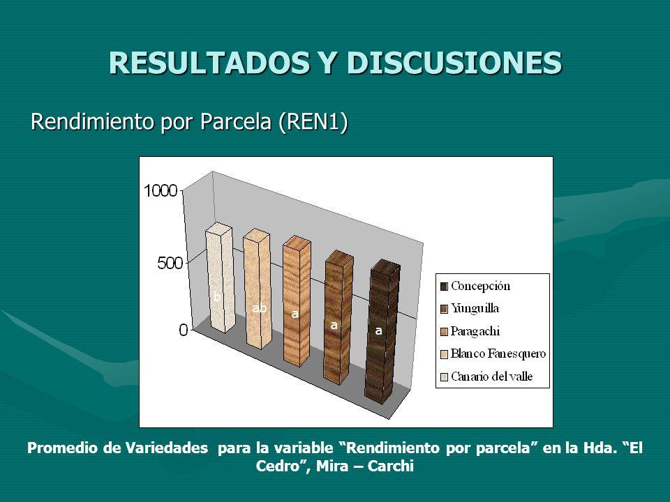 RESULTADOS Y DISCUSIONES Rendimiento por Parcela (REN1) a a a abab b Promedio de Variedades para la variable Rendimiento por parcela en la Hda. El Ced