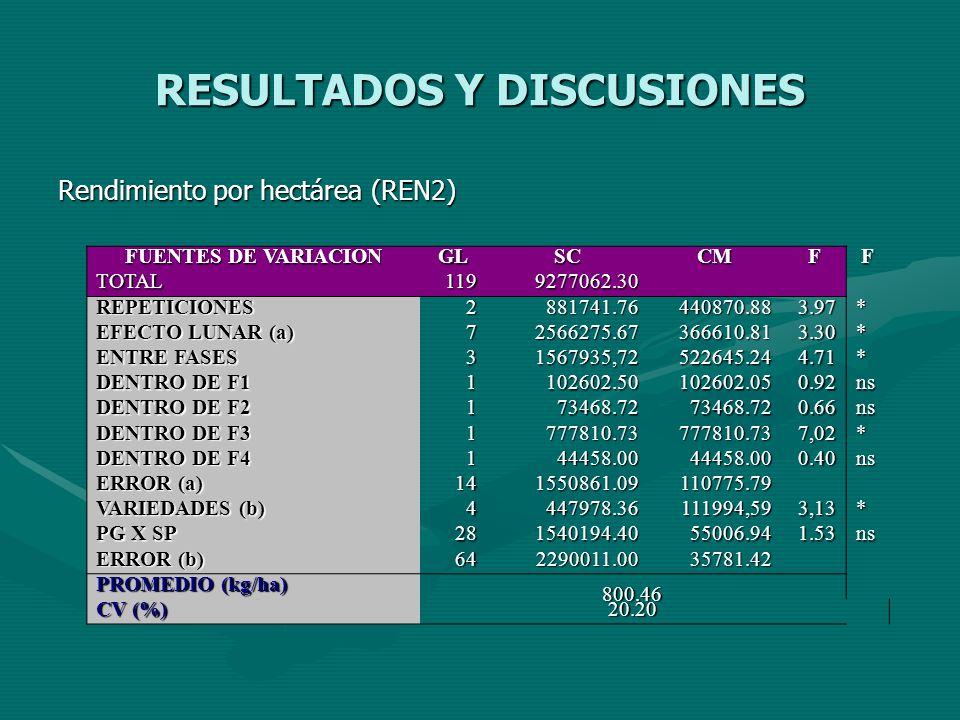 RESULTADOS Y DISCUSIONES Rendimiento por hectárea (REN2) FUENTES DE VARIACION GLSCCMFF TOTAL1199277062.30 REPETICIONES2881741.76440870.883.97* EFECTO