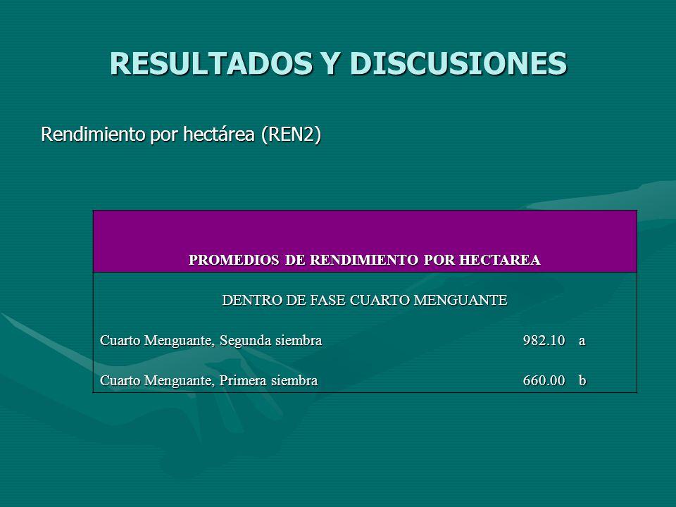 RESULTADOS Y DISCUSIONES Rendimiento por hectárea (REN2) PROMEDIOS DE RENDIMIENTO POR HECTAREA DENTRO DE FASE CUARTO MENGUANTE Cuarto Menguante, Segun