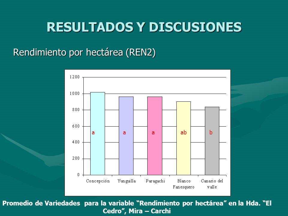 RESULTADOS Y DISCUSIONES Rendimiento por hectárea (REN2) aaaababb Promedio de Variedades para la variable Rendimiento por hectárea en la Hda. El Cedro