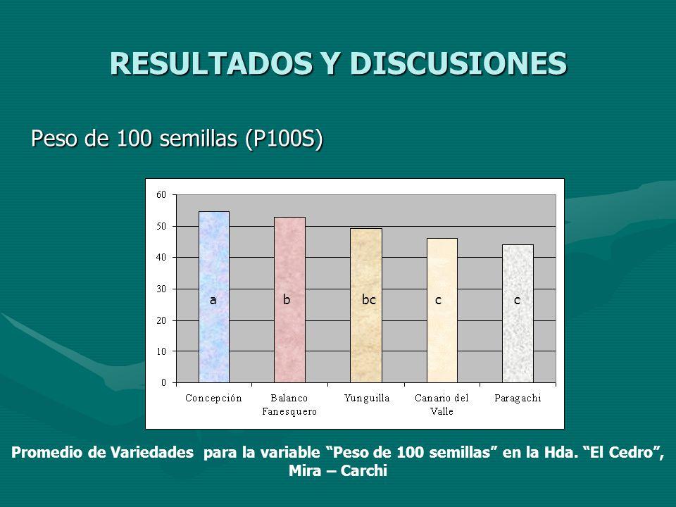 RESULTADOS Y DISCUSIONES Peso de 100 semillas (P100S) a bbccc Promedio de Variedades para la variable Peso de 100 semillas en la Hda. El Cedro, Mira –