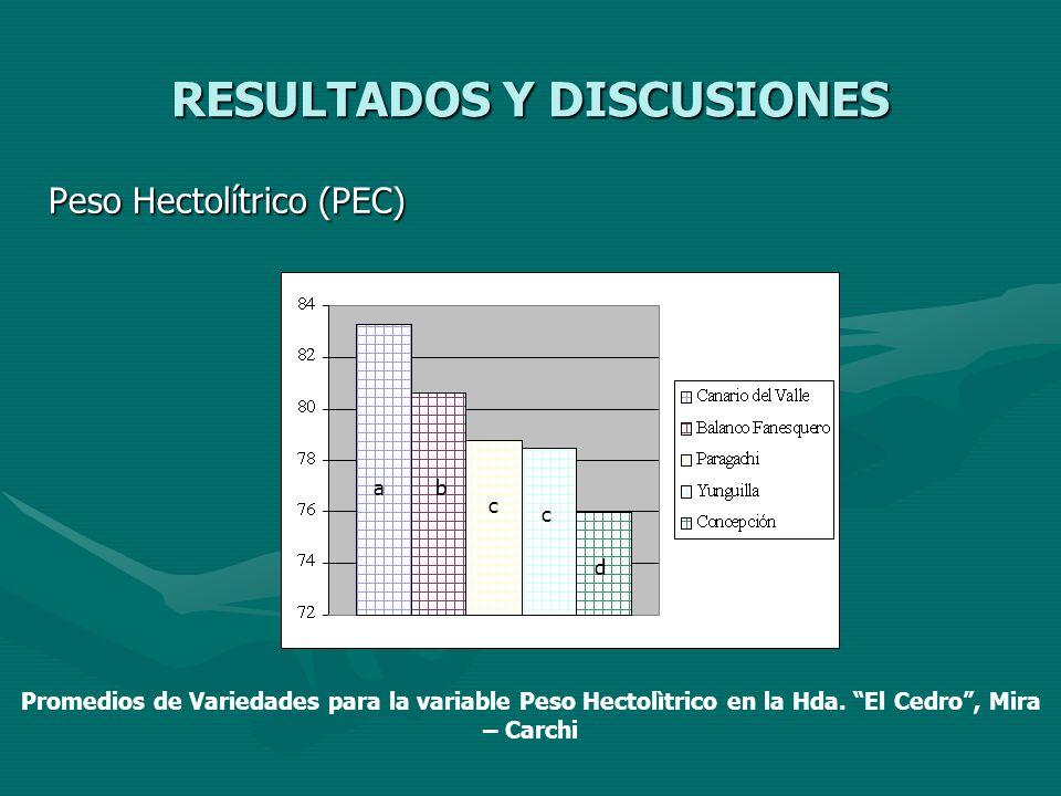 RESULTADOS Y DISCUSIONES Peso Hectolítrico (PEC) ab c c d Promedios de Variedades para la variable Peso Hectolìtrico en la Hda. El Cedro, Mira – Carch