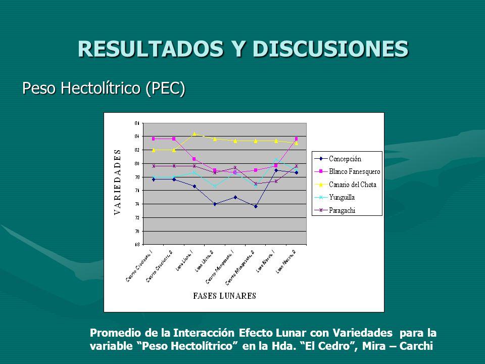 RESULTADOS Y DISCUSIONES Peso Hectolítrico (PEC) Promedio de la Interacción Efecto Lunar con Variedades para la variable Peso Hectolítrico en la Hda.
