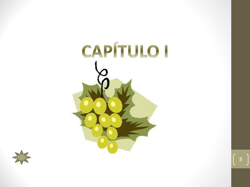 DEFINICIÓN DE MOSTO 4 MOSTO: Es la materia prima para la elaboración del vino tinto.