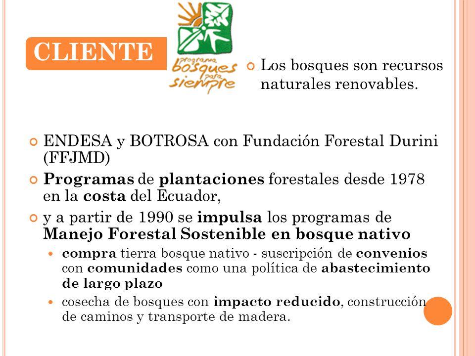 ENDESA y BOTROSA con Fundación Forestal Durini (FFJMD) Programas de plantaciones forestales desde 1978 en la costa del Ecuador, y a partir de 1990 se