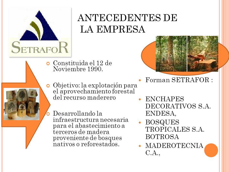 ANTECEDENTES DE LA EMPRESA Constituida el 12 de Noviembre 1990. Objetivo: la explotación para el aprovechamiento forestal del recurso maderero Desarro