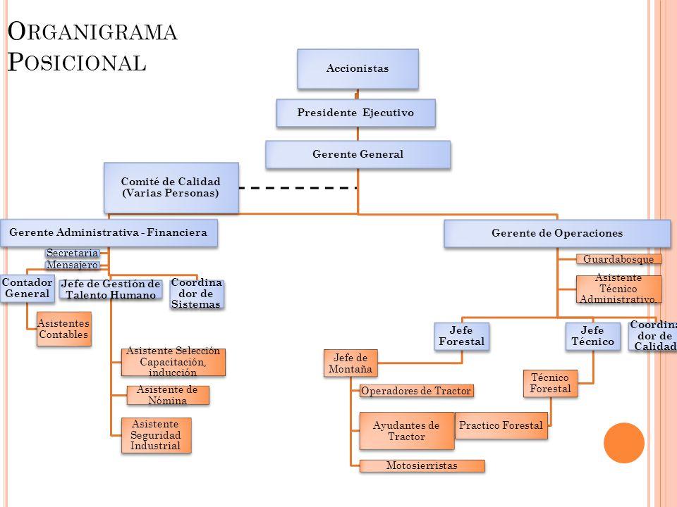 O RGANIGRAMA P OSICIONAL Accionistas Gerente General Gerente Administrativa - Financiera Contador General Asistentes Contables Jefe de Gestión de Tale