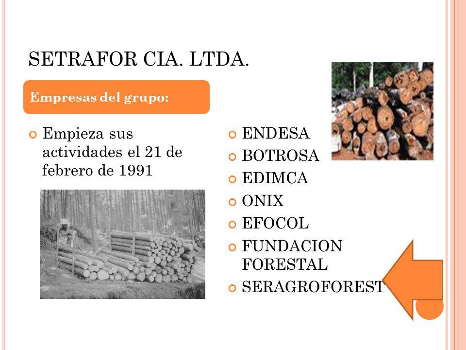 SETRAFOR CIA. LTDA. Empieza sus actividades el 21 de febrero de 1991 ENDESA BOTROSA EDIMCA ONIX EFOCOL FUNDACION FORESTAL SERAGROFOREST Empresas del g
