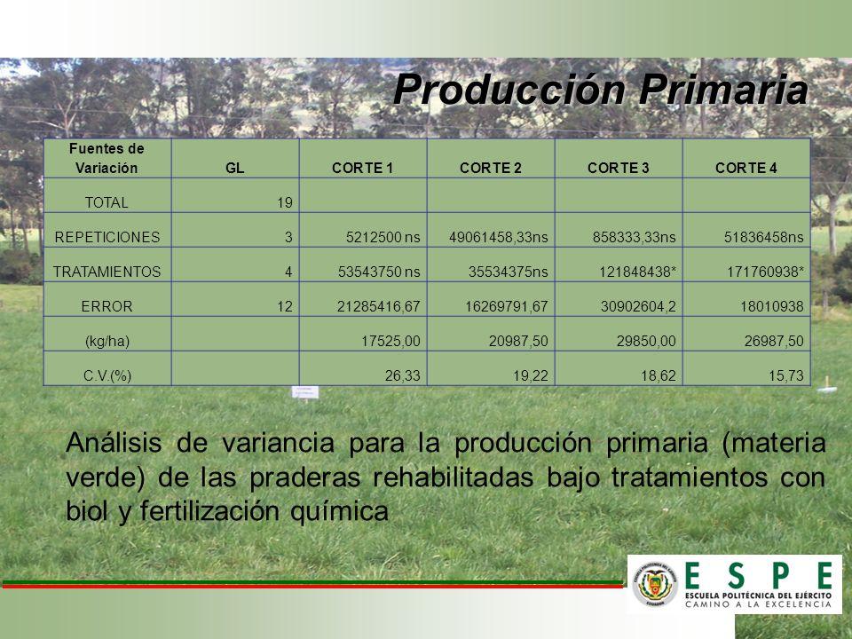 Producción Primaria Fuentes de Variación GLCORTE 1CORTE 2CORTE 3CORTE 4 TOTAL19 REPETICIONES35212500 ns49061458,33ns858333,33ns51836458ns TRATAMIENTOS