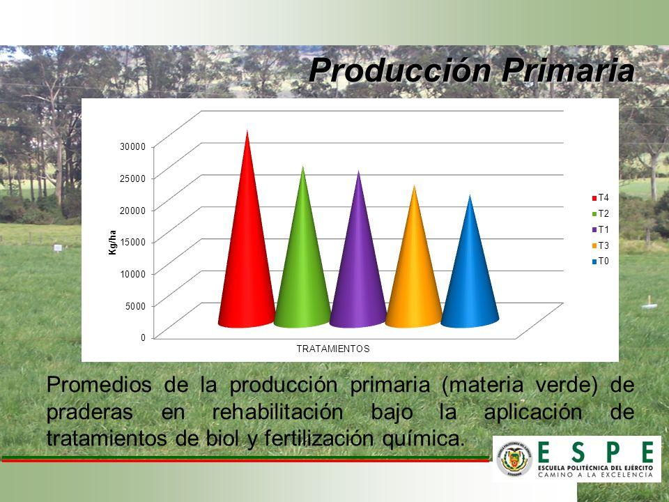 Promedios de la producción primaria (materia verde) de praderas en rehabilitación bajo la aplicación de tratamientos de biol y fertilización química.