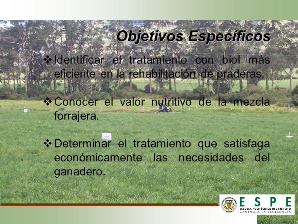 Objetivos Específicos Identificar el tratamiento con biol más eficiente en la rehabilitación de praderas. Conocer el valor nutritivo de la mezcla forr
