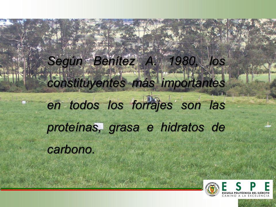 Según Benítez A. 1980, los constituyentes más importantes en todos los forrajes son las proteínas, grasa e hidratos de carbono.