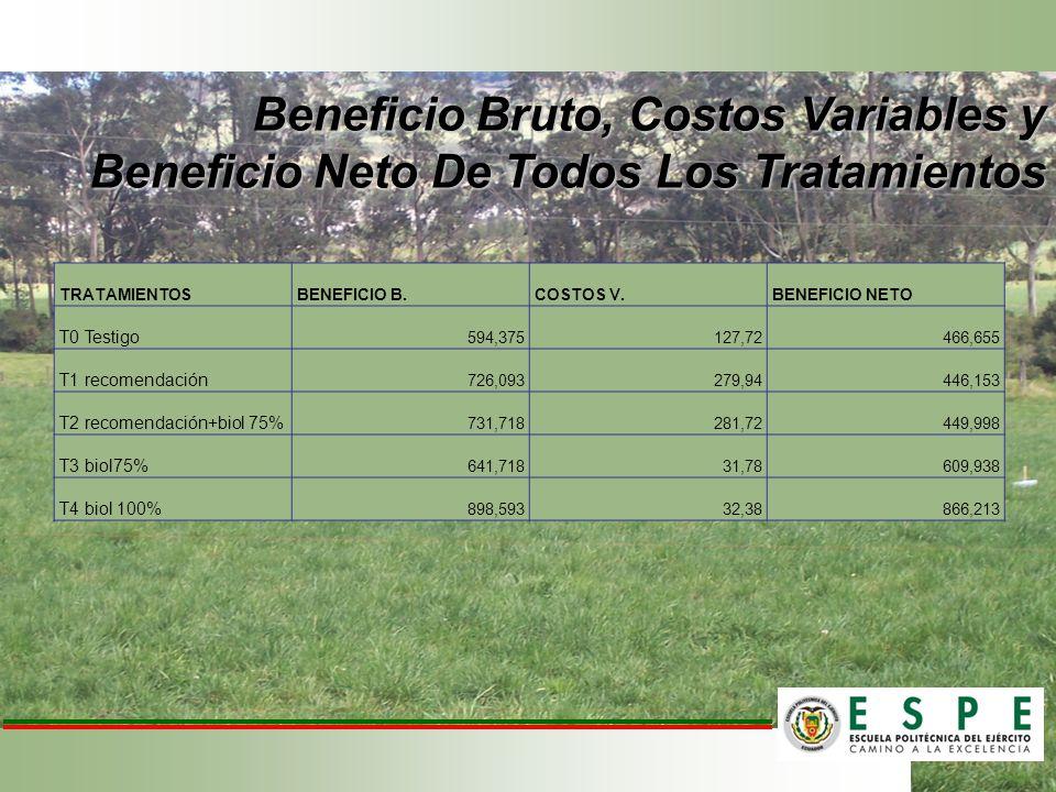 Beneficio Bruto, Costos Variables y Beneficio Neto De Todos Los Tratamientos TRATAMIENTOSBENEFICIO B.COSTOS V.BENEFICIO NETO T0 Testigo 594,375127,724