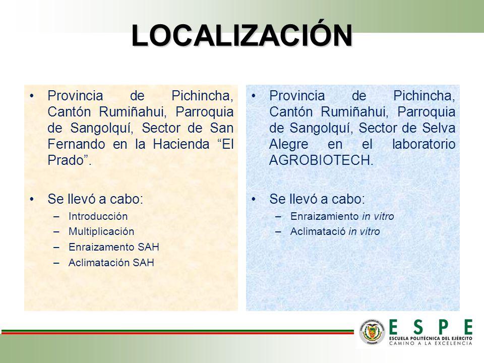 LOCALIZACIÓN Provincia de Pichincha, Cantón Rumiñahui, Parroquia de Sangolquí, Sector de San Fernando en la Hacienda El Prado.