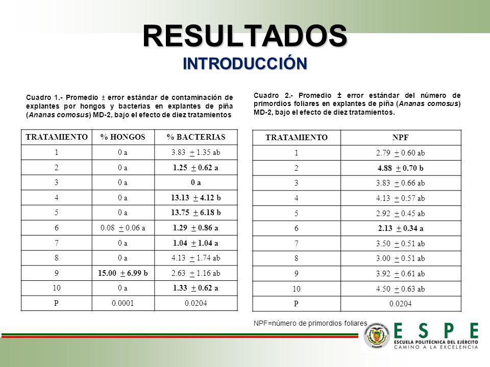 RESULTADOS INTRODUCCIÓN Cuadro 1.- Promedio ± error estándar de contaminación de explantes por hongos y bacterias en explantes de piña (Ananas comosus) MD-2, bajo el efecto de diez tratamientos Cuadro 2.- Promedio ± error estándar del número de primordios foliares en explantes de piña (Ananas comosus) MD-2, bajo el efecto de diez tratamientos.