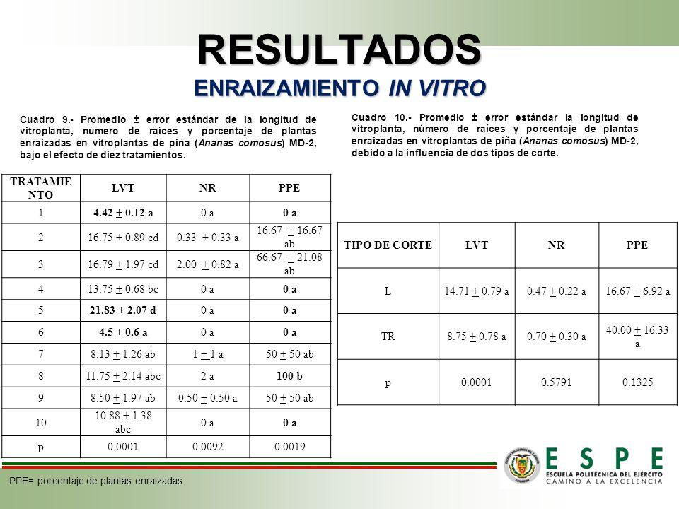 RESULTADOS ENRAIZAMIENTO IN VITRO Cuadro 9.- Promedio ± error estándar de la longitud de vitroplanta, número de raíces y porcentaje de plantas enraizadas en vitroplantas de piña (Ananas comosus) MD-2, bajo el efecto de diez tratamientos.