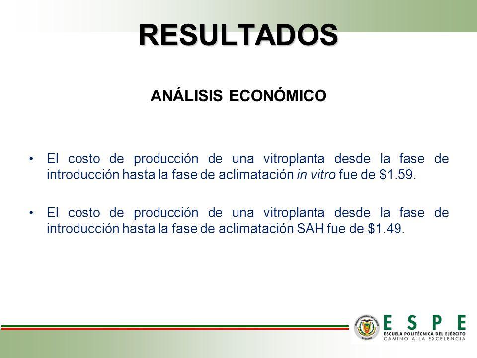 RESULTADOS ANÁLISIS ECONÓMICO El costo de producción de una vitroplanta desde la fase de introducción hasta la fase de aclimatación in vitro fue de $1.59.