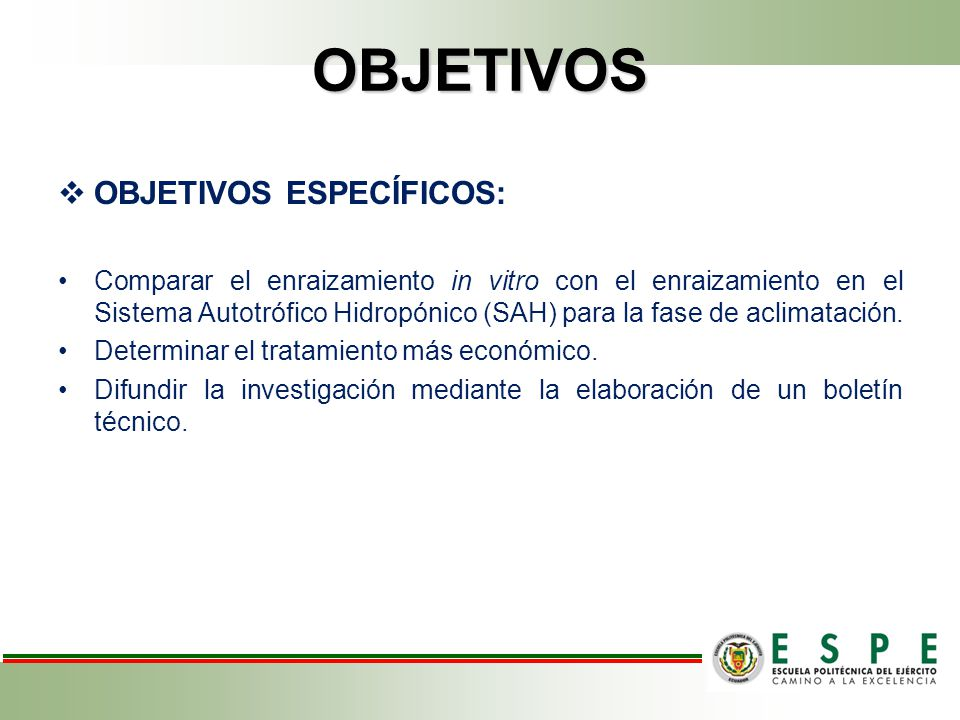 RESULTADOS MULTIPLICACIÓN Cuadro 5.- Promedio ± error estándar del número de brotes y número de hojas en vitroplantas de piña (Ananas comosus) MD-2, bajo el efecto de diez tratamientos.