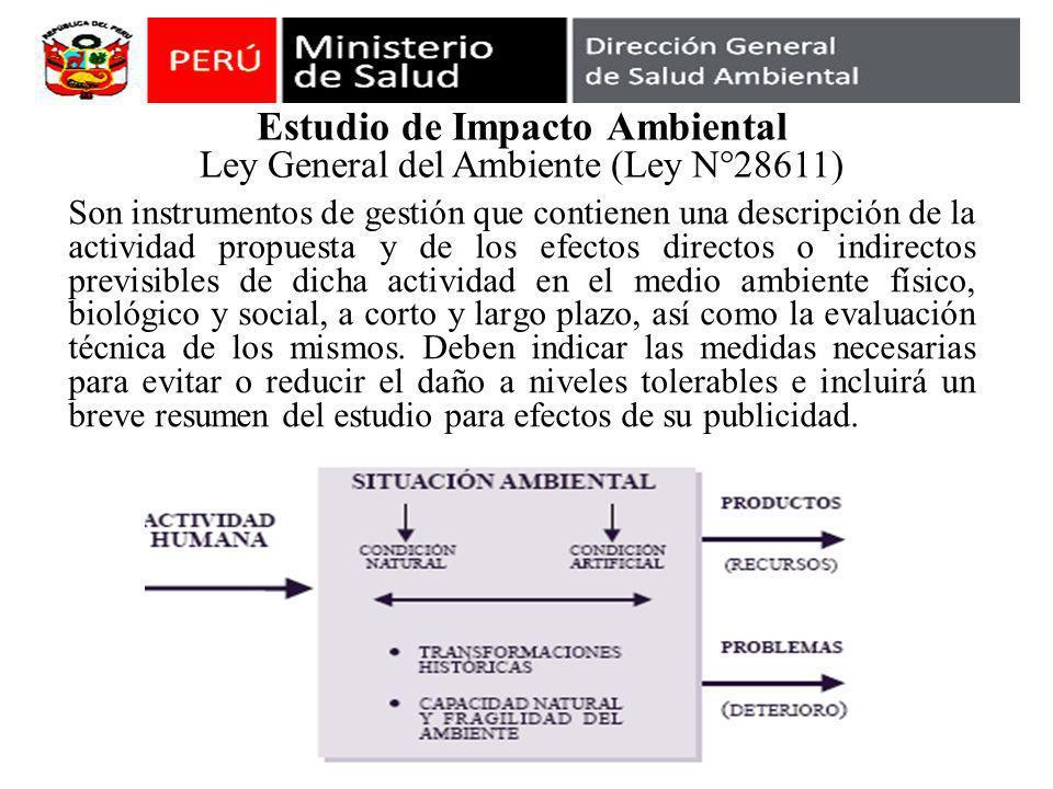 Estudio de Impacto Ambiental Ley General del Ambiente (Ley N°28611) Son instrumentos de gestión que contienen una descripción de la actividad propuest