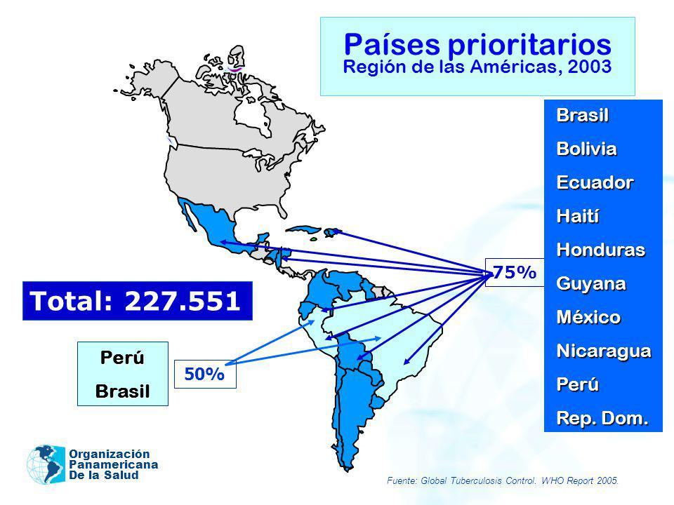 Organización Panamericana De la Salud Países prioritarios Región de las Américas, 2003 75% Total: 227.551 BrasilBoliviaEcuadorHaitíHondurasGuyanaMéxic