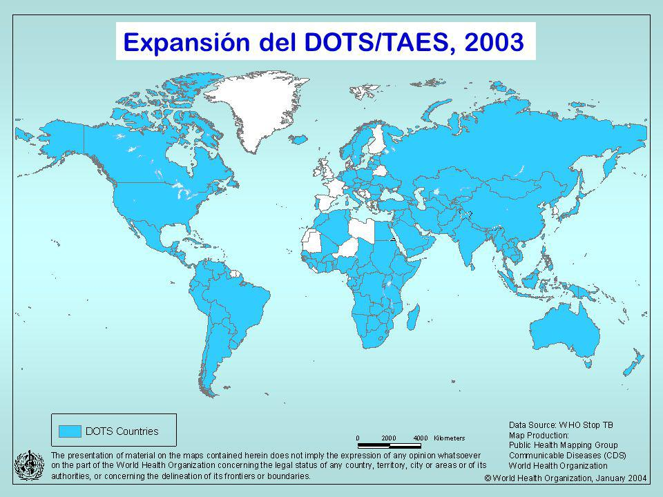 Organización Panamericana De la Salud Expansión del DOTS/TAES, 2003