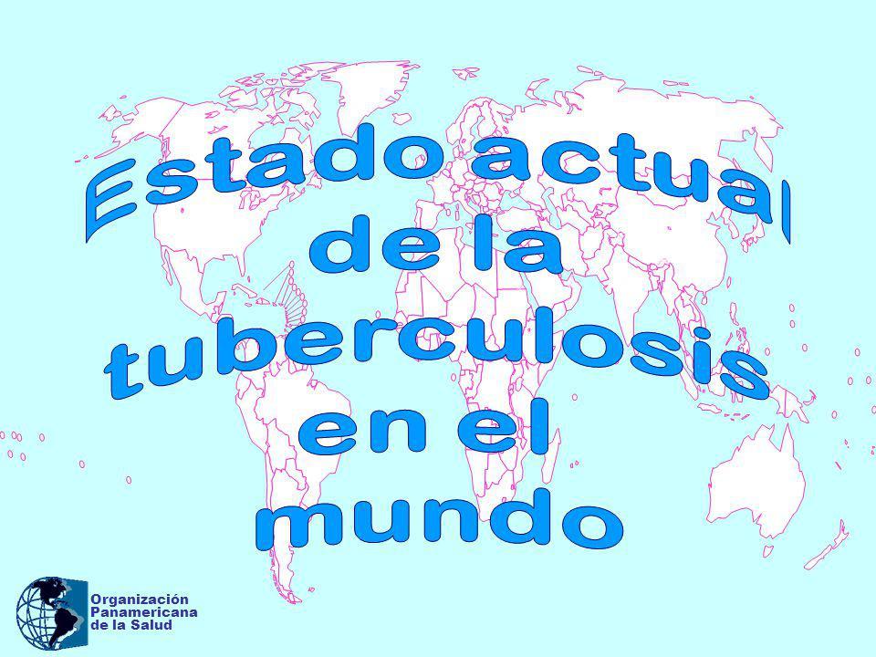 Organización Panamericana De la Salud 2003) Número de casos y tasas estimadas de TB a nivel mundial ( 2003) Población mundial 6.298 millones # casos (millones)Tasa / 100.000 hab.