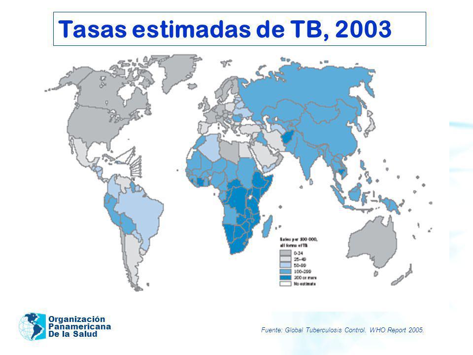 Organización Panamericana De la Salud Metas mundiales para el control de la TB OBJETIVOS DE DESARROLLO DEL MILENIO www.who.int/gtb Implementación Indicador 24 (2003) Detección de casos 45/70% Éxito de tratamiento 82/85% Impacto Indicador 23 (2003/2000 por 100.000 hab / año) Prevalencia 245/279 Mortalidad28/30