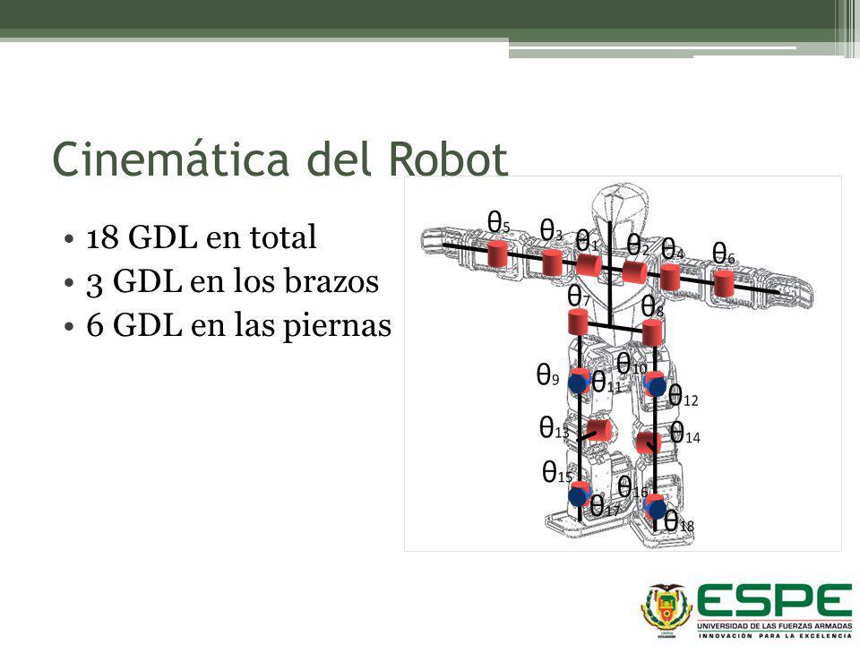Cinemática del Robot 18 GDL en total 3 GDL en los brazos 6 GDL en las piernas
