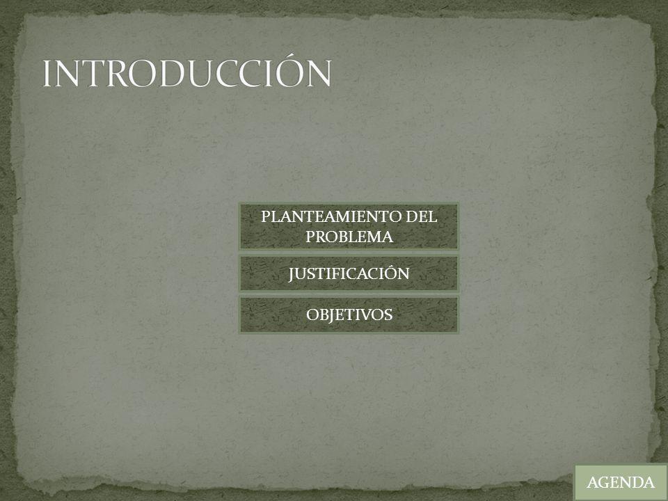 AGENDA DISEÑO Y DESARROLLO DEL CASO PRÁCTICO SITUACIÓN ACTUAL SOLUCIÓN PLANTEADA