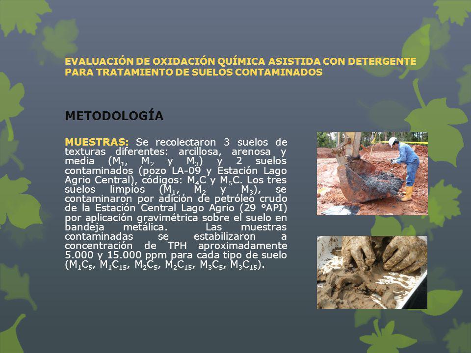 MUESTRAS: Se recolectaron 3 suelos de texturas diferentes: arcillosa, arenosa y media (M 1, M 2 y M 3 ) y 2 suelos contaminados (pozo LA-09 y Estación