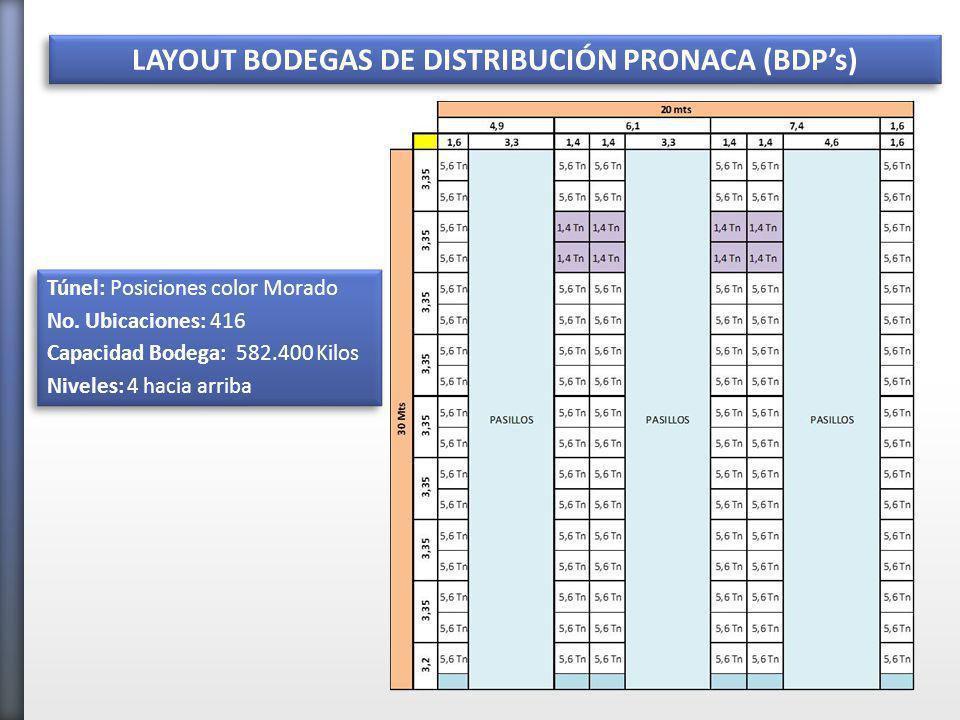 LAYOUT BODEGAS DE DISTRIBUCIÓN PRONACA (BDPs) LM Túnel: Posiciones color Morado No.