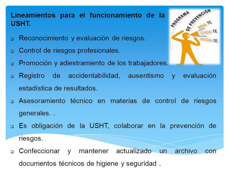 Reconocimiento y evaluación de riesgos. Control de riesgos profesionales. Promoción y adiestramiento de los trabajadores. Registro de accidentabilidad