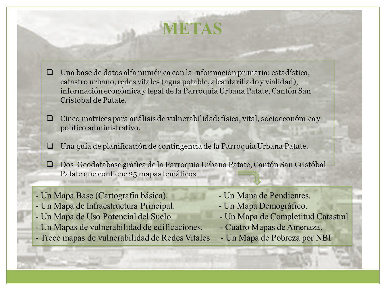 METAS Una base de datos alfa numérica con la información primaria: estadística, catastro urbano, redes vitales (agua potable, alcantarillado y vialidad), información económica y legal de la Parroquia Urbana Patate, Cantón San Cristóbal de Patate.