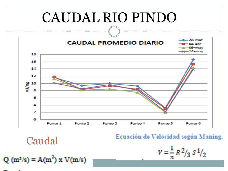 Caudal CAUDAL RIO PINDO