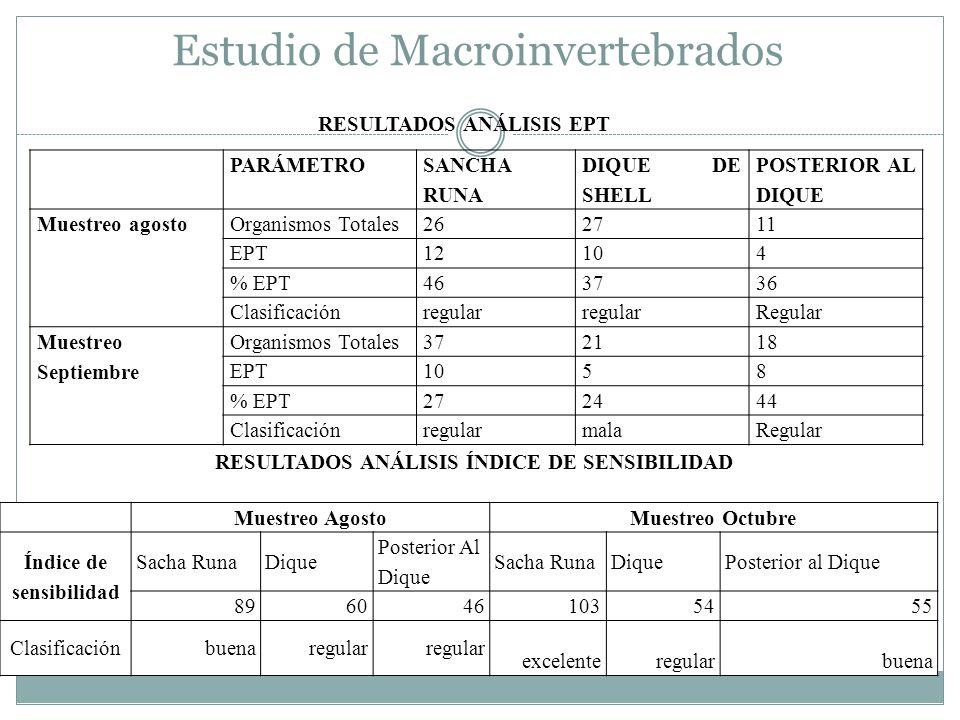 Estudio de Macroinvertebrados PARÁMETRO SANCHA RUNA DIQUE DE SHELL POSTERIOR AL DIQUE Muestreo agostoOrganismos Totales262711 EPT12104 % EPT463736 Cla