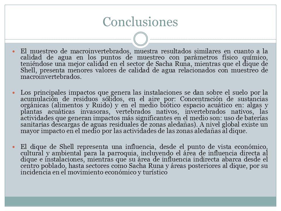 Conclusiones El muestreo de macroinvertebrados, muestra resultados similares en cuanto a la calidad de agua en los puntos de muestreo con parámetros f