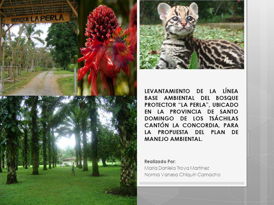 LEVANTAMIENTO DE LA LÍNEA BASE AMBIENTAL DEL BOSQUE PROTECTOR LA PERLA, UBICADO EN LA PROVINCIA DE SANTO DOMINGO DE LOS TSÁCHILAS CANTÓN LA CONCORDIA, PARA LA PROPUESTA DEL PLAN DE MANEJO AMBIENTAL.