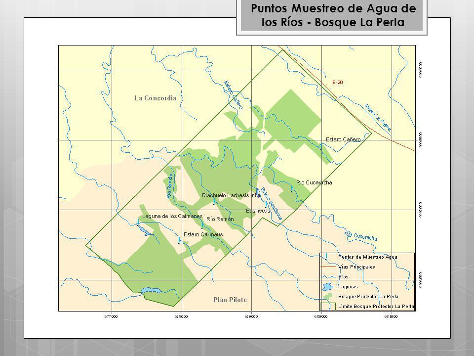 Puntos Muestreo de Agua de los Ríos - Bosque La Perla